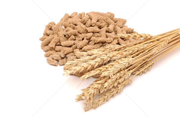 Wheat bran with ear on white background Stock photo © inxti