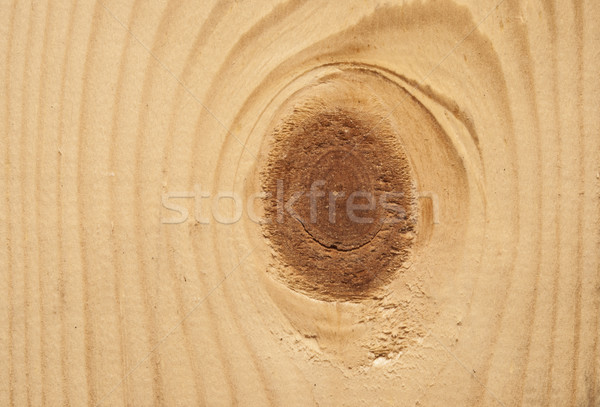 wood with knot Stock photo © inxti