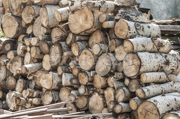 Tűz fa textúra erdő absztrakt természet Stock fotó © inxti