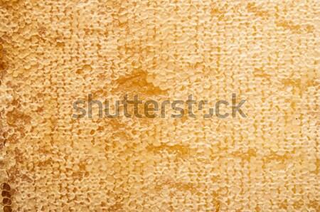 A nido d'ape giallo bella miele lavoratore pattern Foto d'archivio © inxti