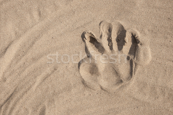 Footprints in sand at the Beach Stock photo © inxti
