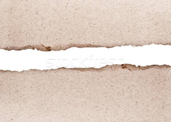 vintage torn paper with space for your text  Stock photo © inxti