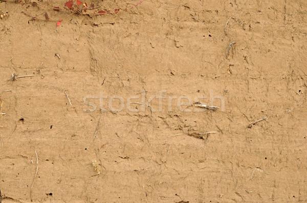 sand closeup as texture Stock photo © inxti