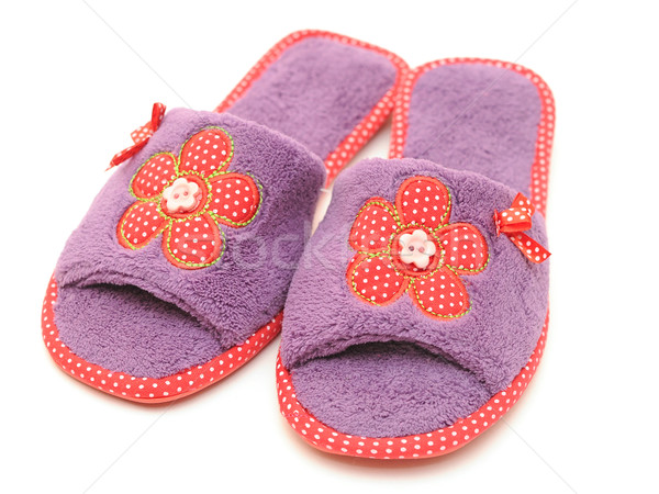 slippers isolated on white Stock photo © inxti