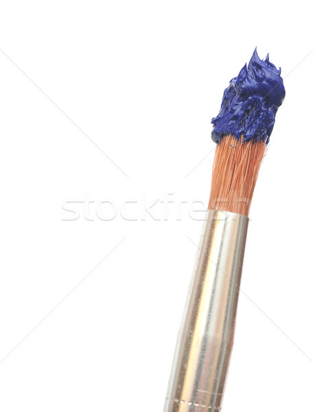 Paint brush with blue color isolated  Stock photo © inxti