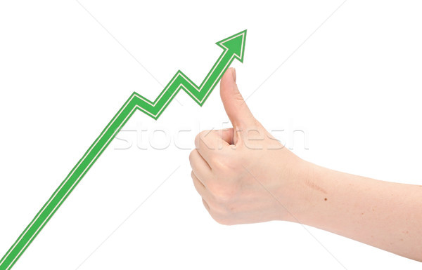hand holds the arrow graph on a white background  Stock photo © inxti
