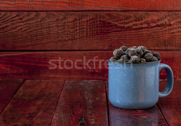 frozen black currant Stock photo © inxti