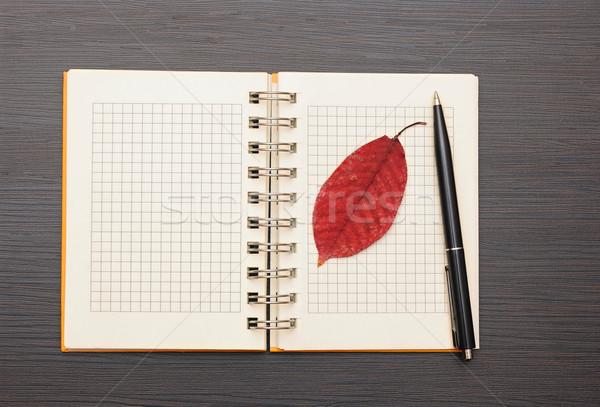 notebook and pen on dark wooden background Stock photo © inxti