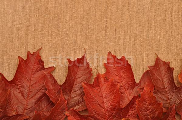 Toile de jute nature art rouge sac Photo stock © inxti