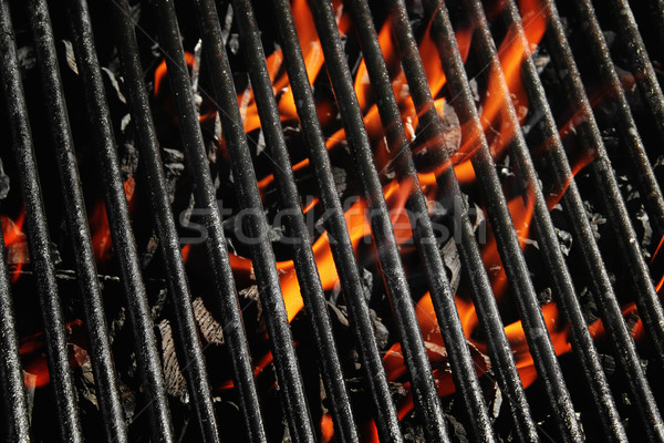 Charcoal fire grill Stock photo © iodrakon
