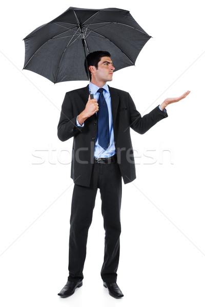 Attesa tempesta stock immagine imprenditore ombrello Foto d'archivio © iodrakon