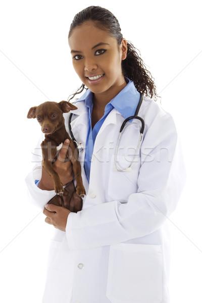 Veterinarian Stock photo © iodrakon