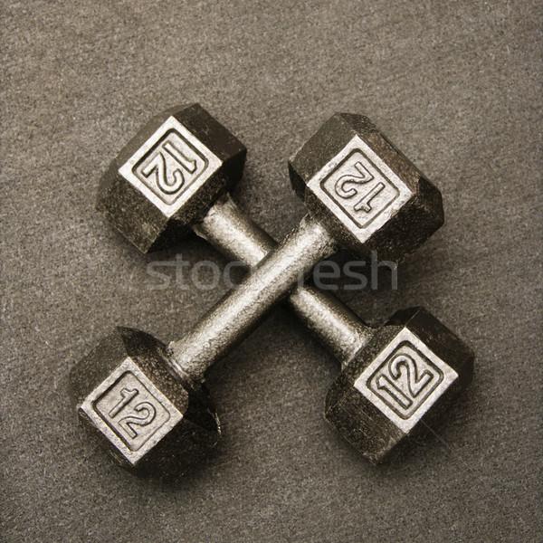 Twelve pound weights Stock photo © iofoto