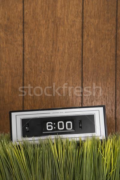 Retro clock in grass. Stock photo © iofoto