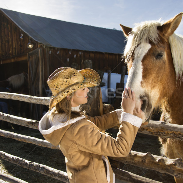 Woman petting horse. Stock photo © iofoto