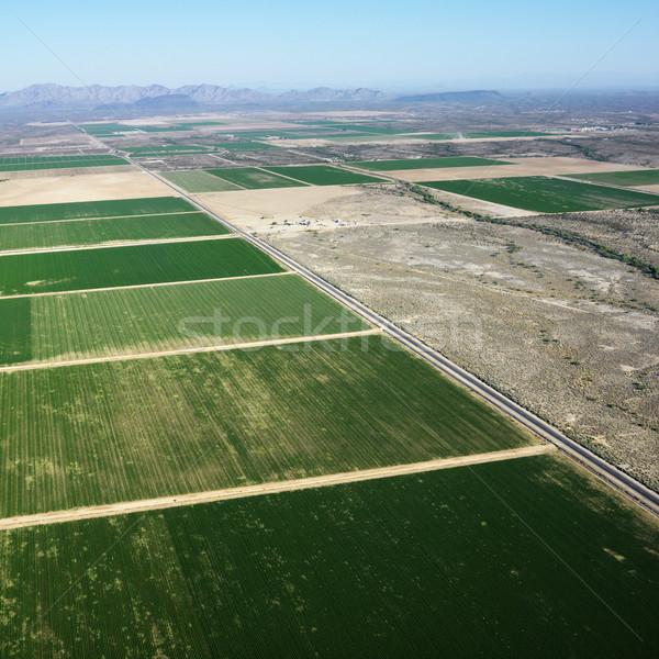 Farm légi légifelvétel terméketlen mezőgazdaság szín Stock fotó © iofoto