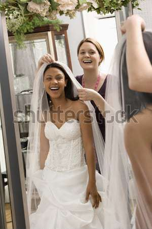 Attractive woman in gown. Stock photo © iofoto