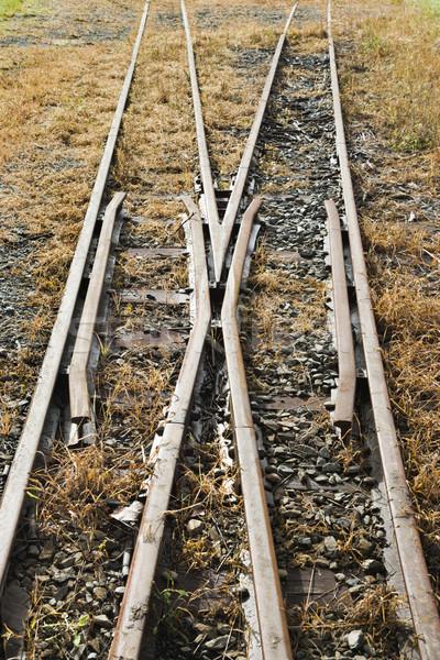 Railroad tracks Stock photo © iofoto