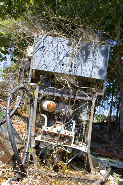 Old gas pump with weeds. Stock photo © iofoto