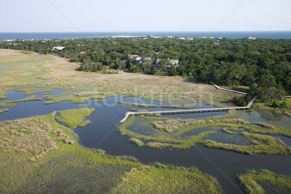 Pier in marsh. Stock photo © iofoto