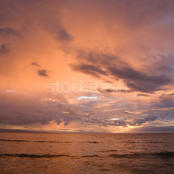 Maui sunset. Stock photo © iofoto