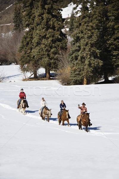 группа верховая езда снега четыре человека покрытый пейзаж Сток-фото © iofoto