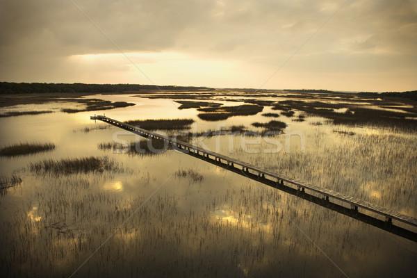 Walkway over marsh. Stock photo © iofoto