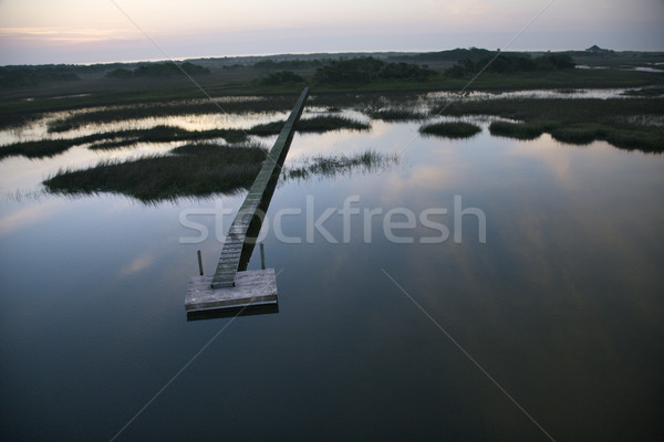 Dock over wetland. Stock photo © iofoto