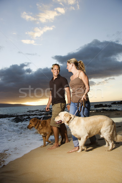 Couple Walking Dogs at the Beach Stock photo © iofoto