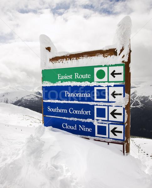 Snow covered sign. Stock photo © iofoto