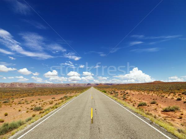 Twee snelweg woestijn landelijk route Stockfoto © iofoto