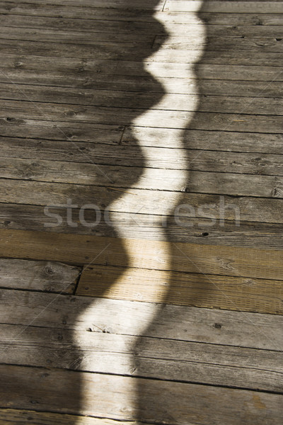 Sunlight on walkway. Stock photo © iofoto