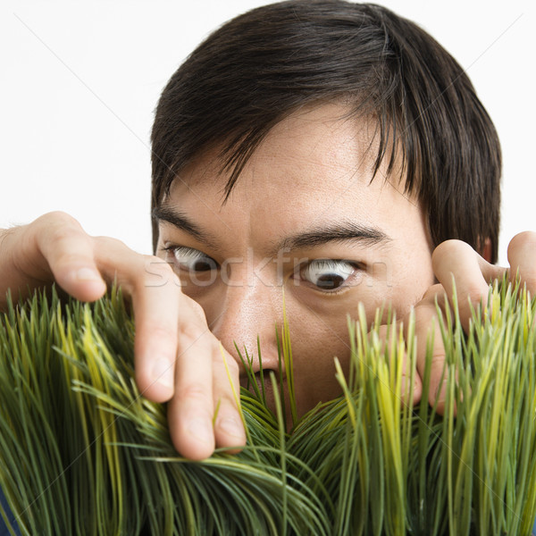 Man looking through grass. Stock photo © iofoto
