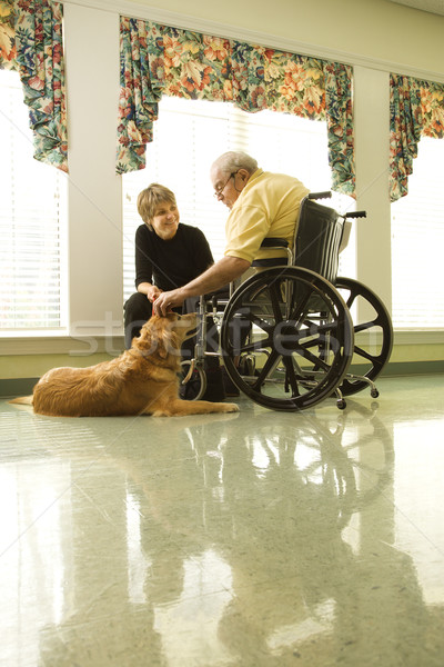 Elderly Man with Woman Petting Dog Stock photo © iofoto