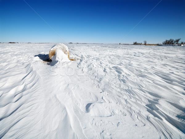Széna bála hó fedett mező kék ég Stock fotó © iofoto