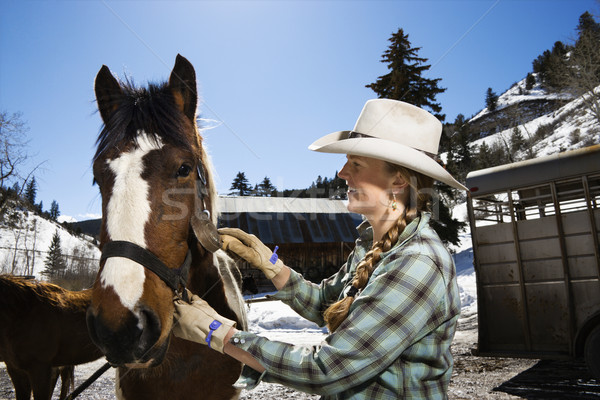 Attractive Young Woman Grooming Horse Stock photo © iofoto