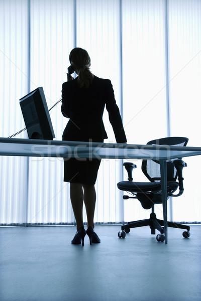 Administrativo ayudante silueta caucásico mujer de negocios pie Foto stock © iofoto