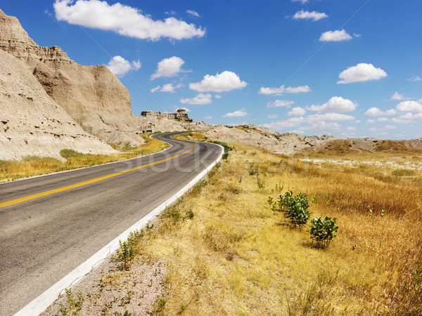 Road Through the Badlands Stock photo © iofoto