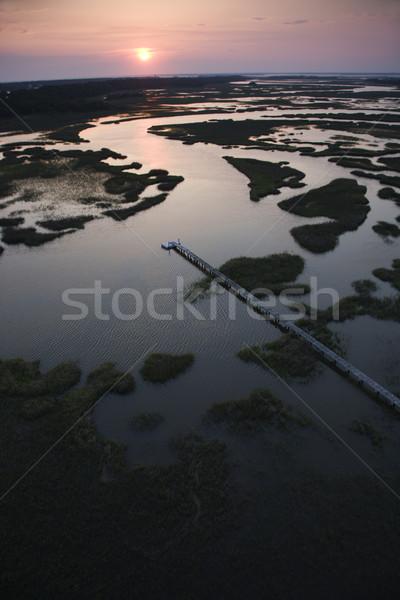 Pier in coastal wetland. Stock photo © iofoto
