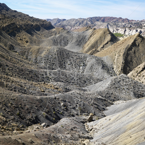 Utah desert. Stock photo © iofoto