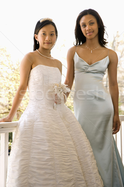 Portrait of bride and bridesmaid. Stock photo © iofoto