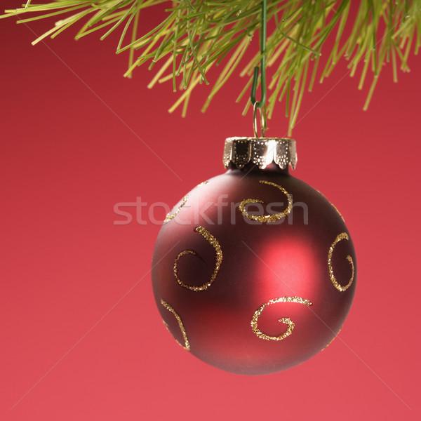 Stock fotó: Karácsony · dísz · csendélet · piros · akasztás · fenyőfa