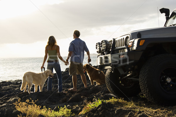 Foto stock: Casal · cães · praia · homem · mulher