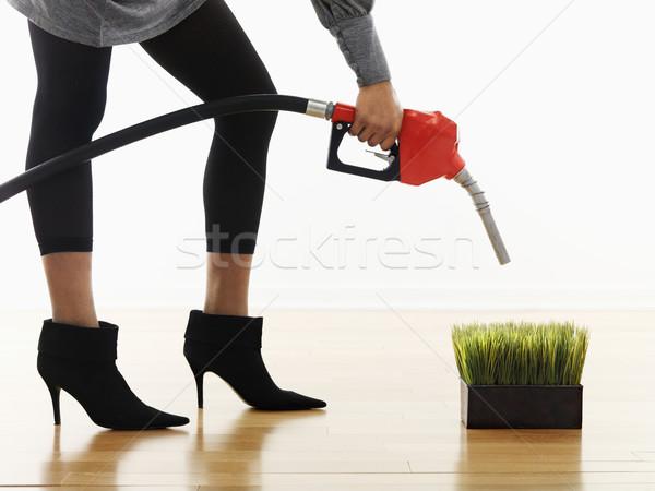 Alternativa combustible mujer gasolina bombear Foto stock © iofoto