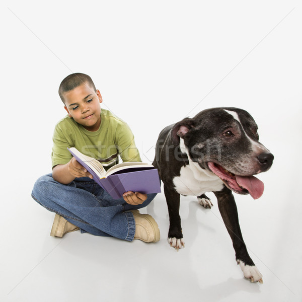 Boy reading book with dog. Stock photo © iofoto