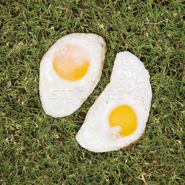 Two fried eggs on grass. Stock photo © iofoto
