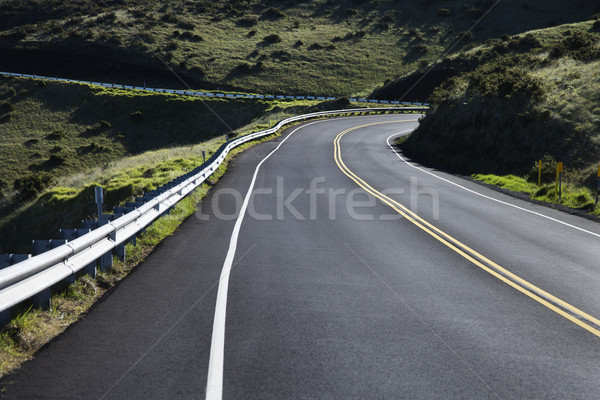 Road in Haleakala, Maui. Stock photo © iofoto