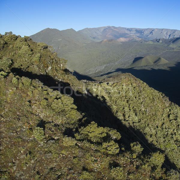 Green Maui mountain. Stock photo © iofoto