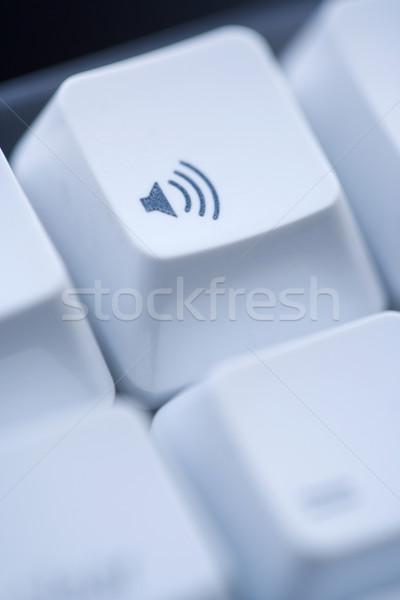 ボリューム コンピュータ キー コンピュータのキーボード ビジネス ストックフォト © iofoto