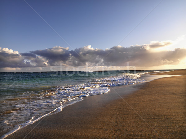 Maui Hawaii beach Stock photo © iofoto
